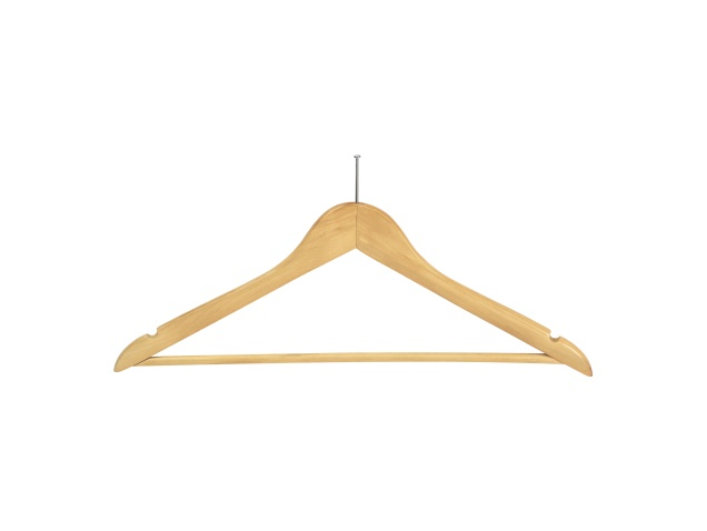 chelsea-guest-hangers-with-security-pin-(case-qty-100)